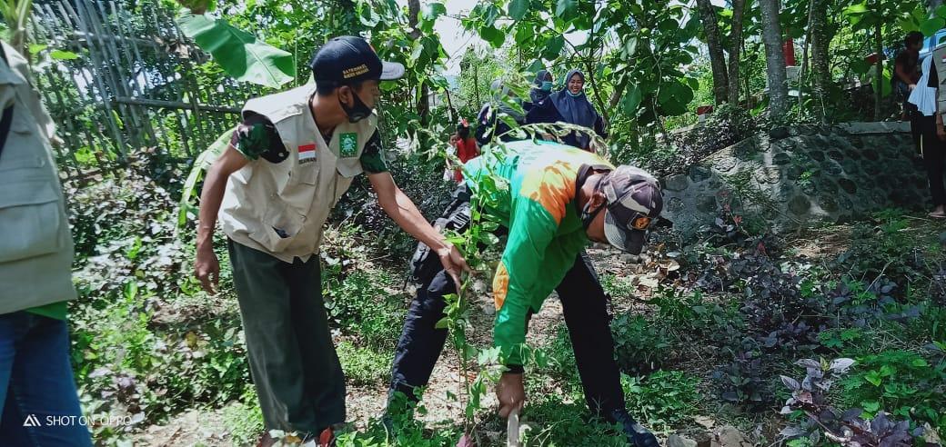 Relawan LPBINU Ponorogo saat giat Penanaman 100 pohon trembesi dan bunga di sekitar lahan- lahan kritis di desa Tugurejo