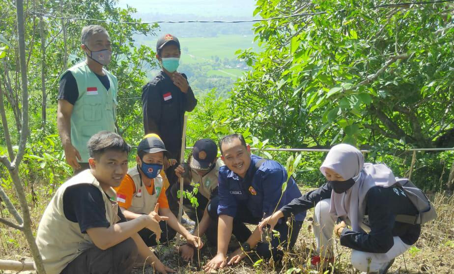 Bersama LPBI NU Ponorogo Gerakkan 31 Titik Penanaman Pohon