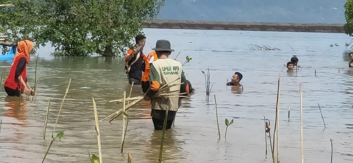 Penanaman 5000 bibit mangrove di pantai Pancer Door Desa Kembang Pacitan- Jawa Timur