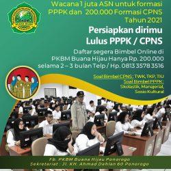 Tahun 2021 Wacana Pemerintah membuka 1 Juta ASN untuk Formasi PPPK dan -+ 200.000 formasi CPNS